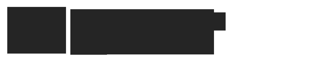 Buurtbusvereniging Dongemond